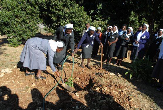 Congregación Regional de Zimbabwe 2019