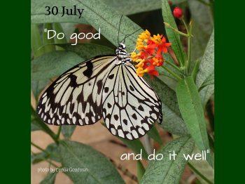 30 July